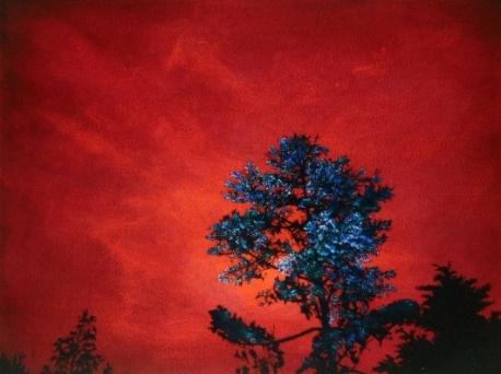 나무 75.7x100.8cm Oil on Canvas 2009.jpg